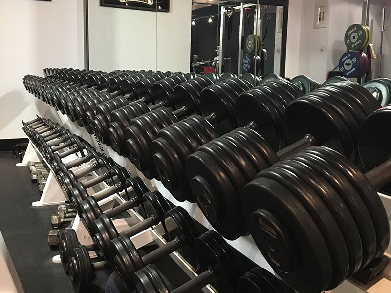 Weights - Frederickson Performance Centre, Brandon, Manitoba